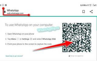Как пользоваться WhatsApp Web на телефоне Андроид — проверенный способ