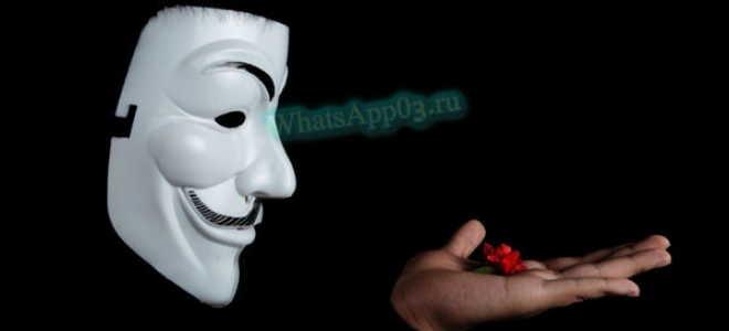 Как анонимно отправить сообщение в WhatsApp - все способы
