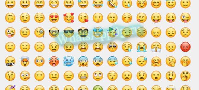 Как понять значение стикеров в WhatsApp, как пользоваться иконками