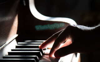 Скачать звуки и мелодии для WhatsApp, поиск популярных песен