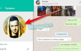 Инструкция, как установить аватарку в WhatsApp, изменение фото профиля