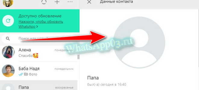 Не отображается фото контакта в WhatsApp, что делать