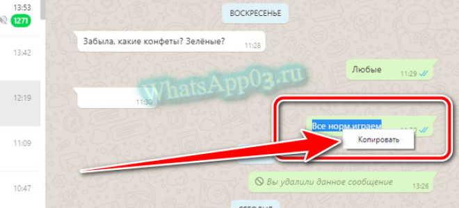 Как скопировать сообщение в WhatsApp на телефоне и компьютере