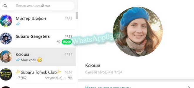 Как переслать контакт в WhatsApp