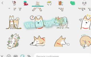 Удаление стикеров из WhatsApp, как убрать ненужные стикерпаки