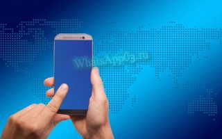 Нужен ли интернет для работы WhatsApp — обзор офлайн-опций