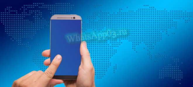 Нужен ли интернет для работы WhatsApp