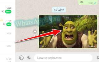 Как найти анимацию для WhatsApp и вставить ее в сообщение
