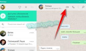 Видеозвонки через WhatsApp с ноутбука — как позвонить через ПК