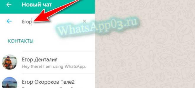Поиск в WhatsApp по имени, фамилии или номеру