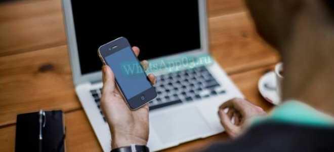 Как скачать WhatsApp бесплатно, быстро и правильно