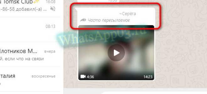 Что такое часто пересылаемое сообщение в WhatsApp