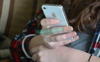 Что означают галочки в WhatsApp, как определить статус сообщения