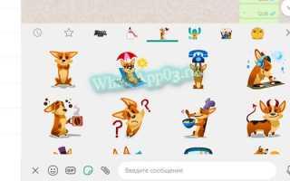 Стикеры в WhatsApp, где найти и как использовать — инструкция