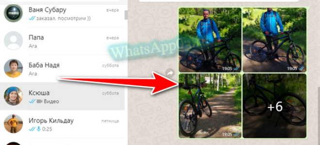 Как скинуть фото через WhatsApp быстро и правильно