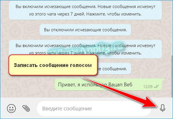 Голосовое СМС